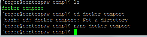 start nano to check docker file